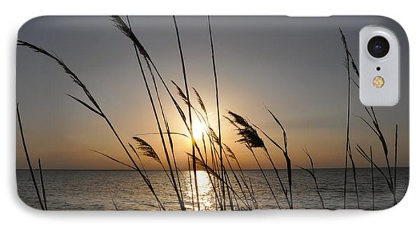 Tall Grass Sunset IPhone Case by Bill Cannon