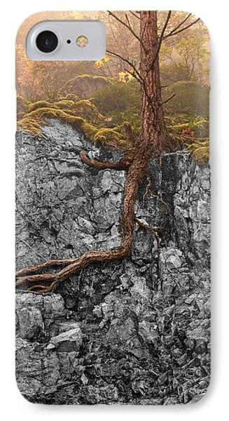 Taproot IPhone Case by Mary Jo Allen