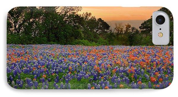 Texas Sunset - Bluebonnet Landscape Wildflowers IPhone Case by Jon Holiday