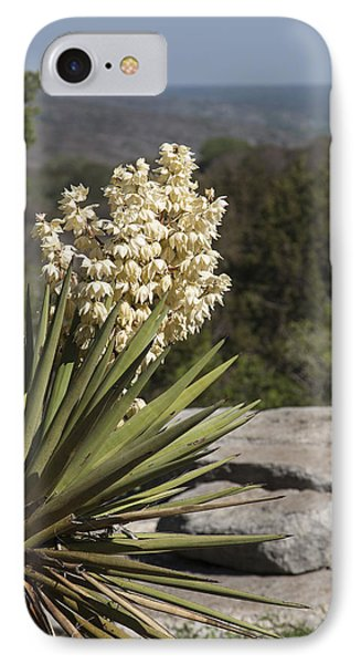 Texas Yucca IPhone Case by William Bunce