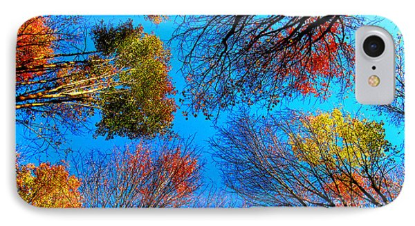 The Autumn Leaves At Potato Creek Phone Case by Tina M Wenger