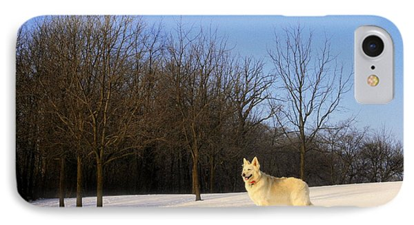 The Dog On The Hill Phone Case by Kay Novy