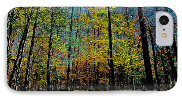 The Final Days Of Fall IPhone Case by David Patterson