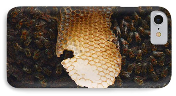 The Hive  Phone Case by Shawn Marlow