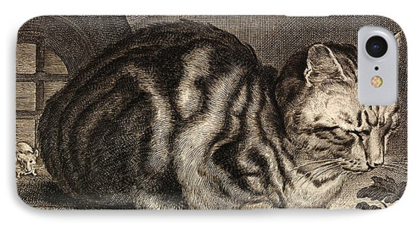 The Large Cat  IPhone Case by Cornelis de Visscher