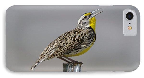 The Meadowlark Sings  IPhone Case by Jeff Swan