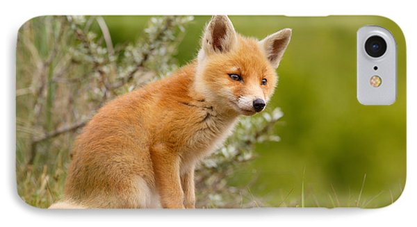 The New Kit ...curious Red Fox Cub IPhone Case by Roeselien Raimond