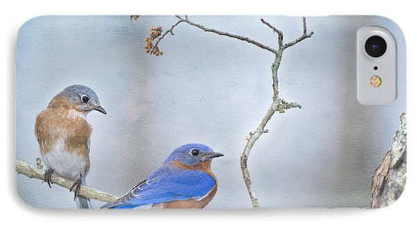 The Presence Of Bluebirds IPhone Case by Bonnie Barry