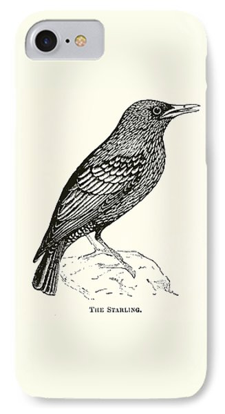 The Starling IPhone Case by English School