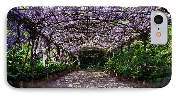 The Wisteria Arbour In Full Bloom IPhone Case by Panoramic Images