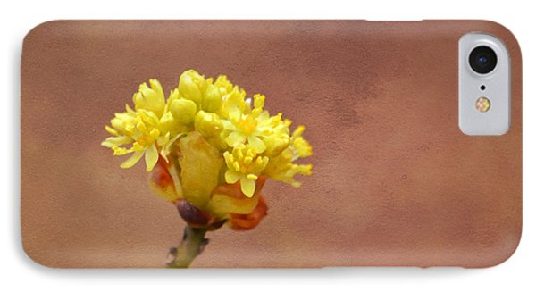 This Bud's For You IPhone Case by Deena Stoddard