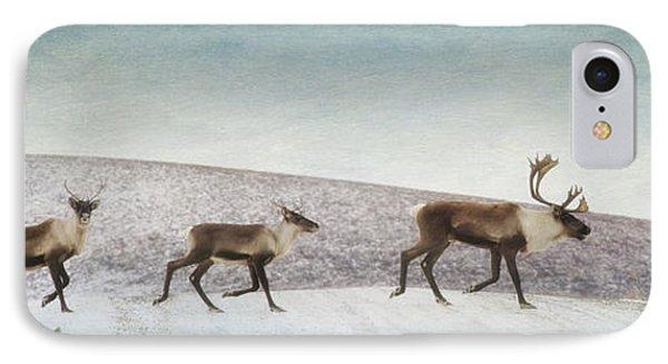 Three Caribous IPhone Case by Priska Wettstein