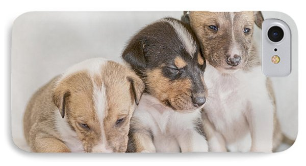 Three Collie Puppies Phone Case by Martin Capek