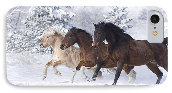 Three Snow Horses IPhone Case by Carol Walker