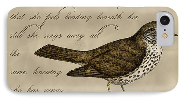 Thrush Bird Wall Art IPhone Case by Christy Beckwith