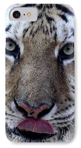 Tiger Lick Phone Case by Karol Livote