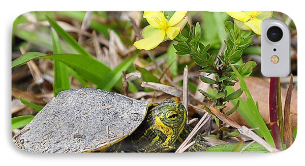 Tiny Turtle Close Up Phone Case by Al Powell Photography USA