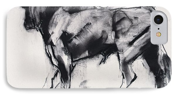 Toro Azul   Study IPhone Case by Mark Adlington