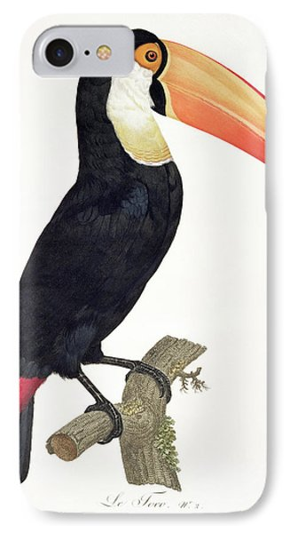 Toucan IPhone Case by Jacques Barraband
