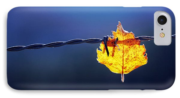 Trapped Leaf On Barbed Wire IPhone Case by Mikel Martinez de Osaba