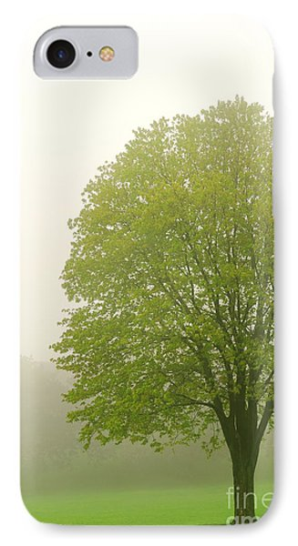 Tree In Fog Phone Case by Elena Elisseeva