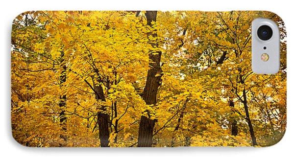 Tree Of Gold Phone Case by Kamil Swiatek