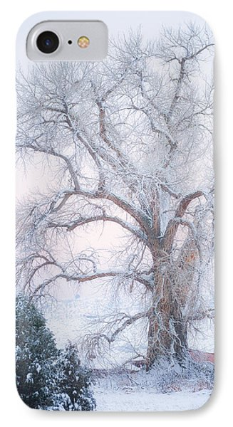 Tree Of Snow IPhone Case by Darren  White