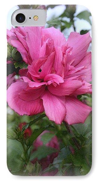 Tree Rose Of Sharon Phone Case by Kay Novy