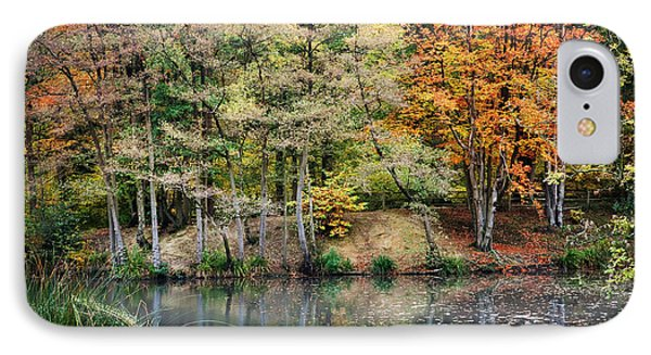 Trees In Autumn IPhone Case by Natalie Kinnear