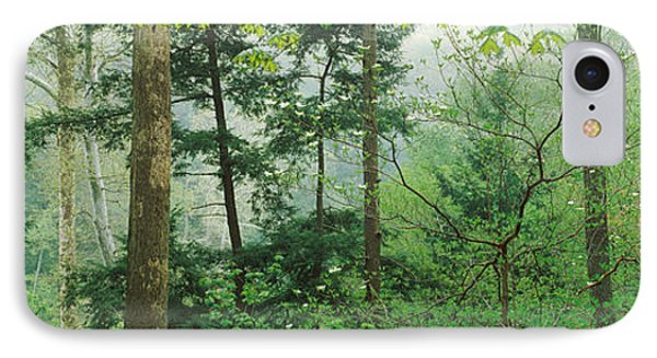 Trees In Spring Forest, Turkey Run IPhone Case by Panoramic Images