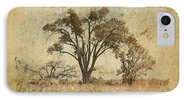 Trees In The Lowland IPhone Case by Brett Pfister