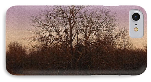 Trees In The Setting Sun Phone Case by R McLellan