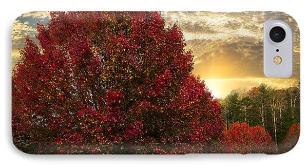 Trees On Fire Phone Case by Debra and Dave Vanderlaan
