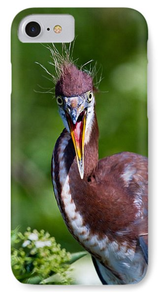 Tricolored Heron In Awe IPhone Case by Andres Leon