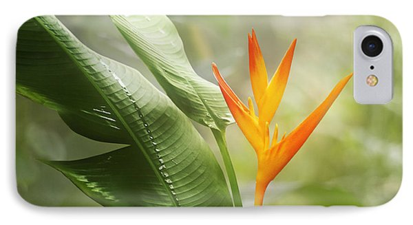 Tropical Flower IPhone Case by Natalie Kinnear