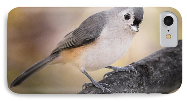 Tufted Titmouse IPhone Case by Bill Wakeley