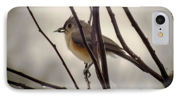 Tufted Titmouse IPhone Case by Karen Wiles