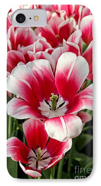 Tulip Annemarie Phone Case by Jasna Buncic