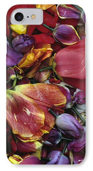 Tulip Heads Phone Case by Jim Corwin