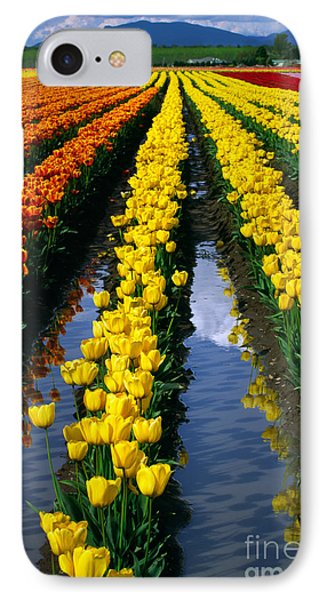 Tulip Reflections Phone Case by Inge Johnsson