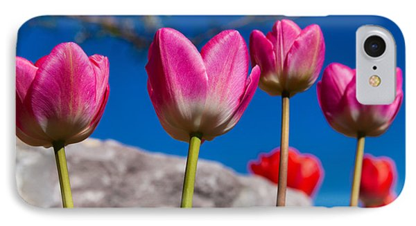 Tulip Revival IPhone Case by Chad Dutson