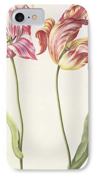 Tulips IPhone 7 Case by Nicolas Robert