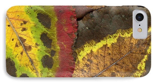 Turning Leaves 2 Phone Case by Stephen Anderson