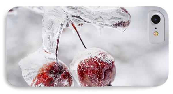 Two Frozen Crab Apples  IPhone Case by Elena Elisseeva