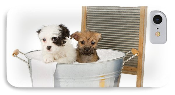 Two Puppies Taking A Bath IPhone Case by Susan Schmitz