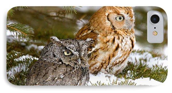 Two Screech Owls Phone Case by John Pitcher