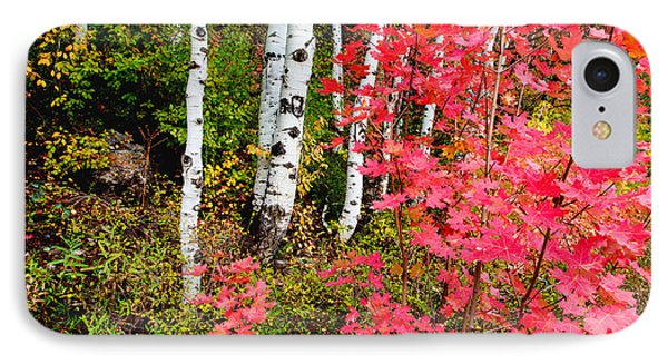 Uinta Colors IPhone Case by Chad Dutson