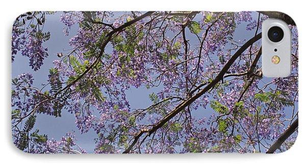 Under The Jacaranda Tree IPhone Case by Rona Black