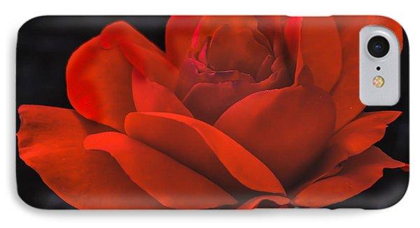 Valentine Rose IPhone Case by Robert Bales