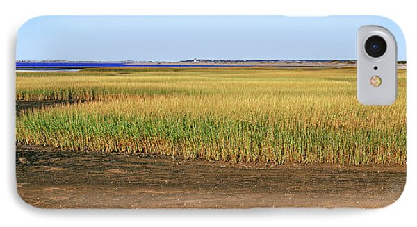View Of Crop In Field, Cape Cod IPhone Case by Panoramic Images